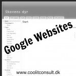 Google websites www.coolitconsult.dk